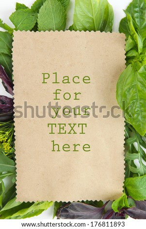 Old brown paper with fresh herbs - stock photo