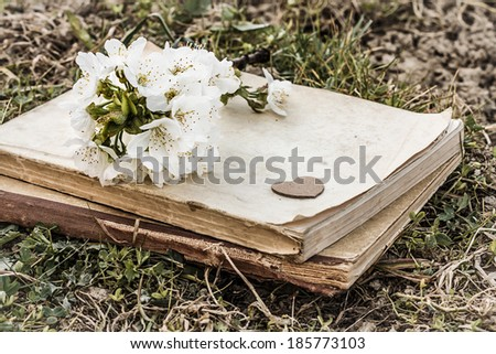 old closed books with heart and twig with cherry blossoms on ground - love theme with vintage color effect - stock photo