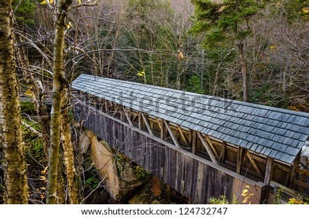 Old Covered Bridge in a Forest - stock photo