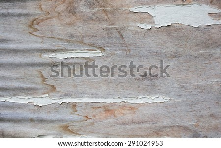 Old decaying wood texture - stock photo
