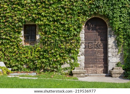 Old Door and Window on the Ivy Covered Exterior Wall of an Historic Building - stock photo