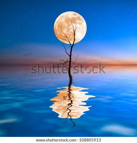 Old dry tree in water with big moon on background, reflection in water - stock photo