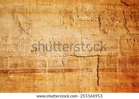 old egypt hieroglyphs on papyrus background - stock photo