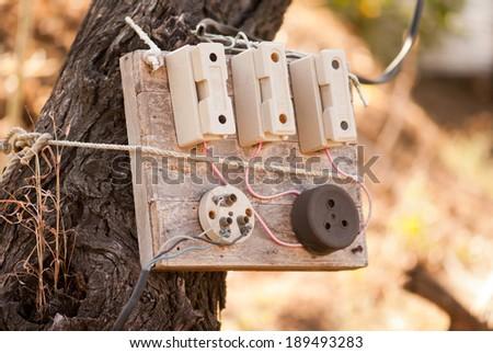 Old Electric Fuse box on tree, Maharashtra, India, south East Asia - stock photo