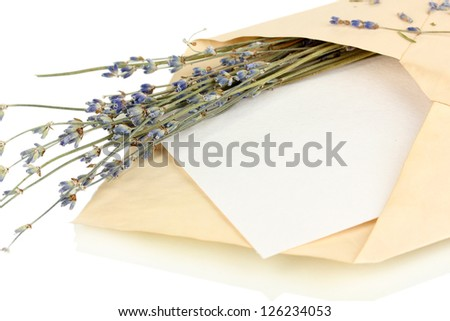 Old envelope with blank paper and lavender isolated on white - stock photo