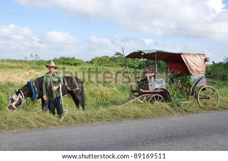 old farmer in cuba in front of his horse - stock photo