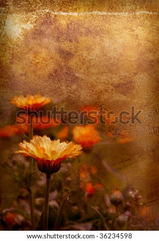 old-fashioned artistic flower - stock photo