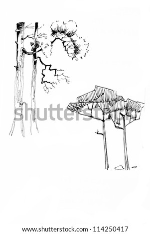 Old fashioned stylization tree drawing ink lineart - stock photo