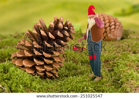Old garden gnome with miniature basket standing in front of a pinecone - stock photo