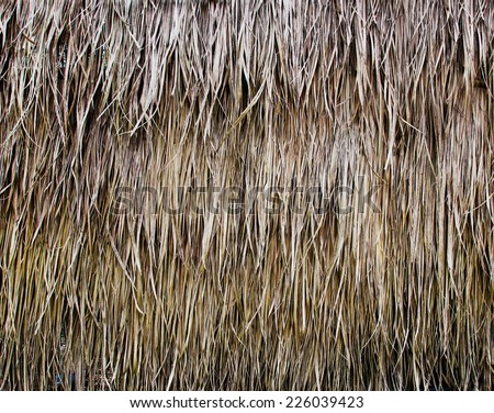 old grass roof - stock photo