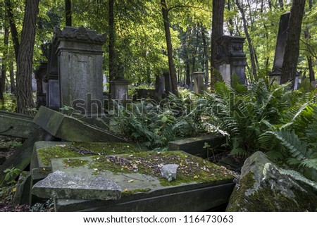 Old graves at historic Jewish cemetery, Okopowa Street in Warsaw, Poland - stock photo