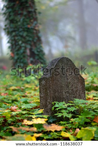 Old Gravestone with leaf on autumn - stock photo