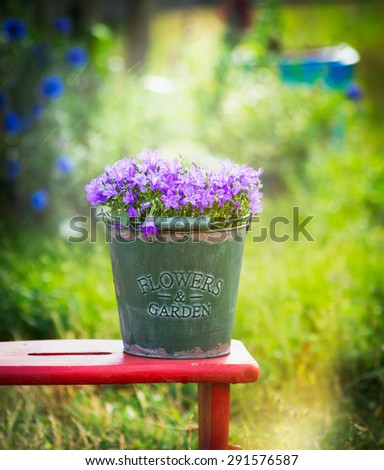 Old green bucket with garden bell flowers on red little stool over summer nature background   - stock photo