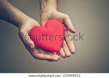 old hands of the elderly giving a red heart - stock photo