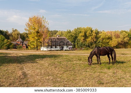 Old house farmers and horse grazing in a meadow. Pirogovo, Ukraine - stock photo