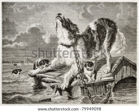 Old illustration of a dog and puppies trying to save from flooding. Created by Freeman and Quartley after Kiorboe, published on Magasin Pittoresque, Paris, 1850 - stock photo