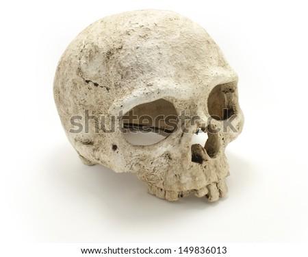 Old jawless Human Skull isolated against white background. Anatomy illustration. Medical image. Sign of death. Symbol of dying. Ceramic. - stock photo