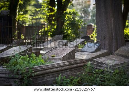 Old jewish cemetery, Liepaja, Latvia. Selective focus. - stock photo