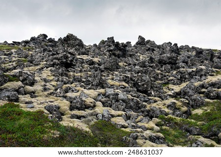 Old lava field covered with yellow and green moss, Arnarstapi, West Iceland - stock photo
