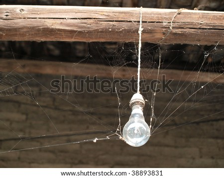 Old  light bulb with cobweb. - stock photo