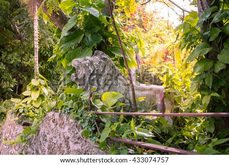 Old  Lion Statue in the forest, hiden in the trees, private garden near the brickstone wall. Miami, Usa, Florida, Key Biscayne. USA   - stock photo