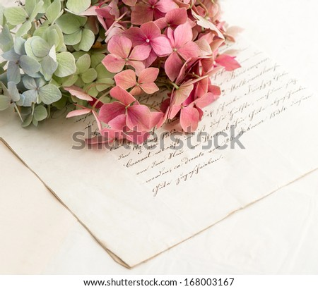 old love letters and garden flowers hydrangea. romantic vintage style background. selective focus - stock photo