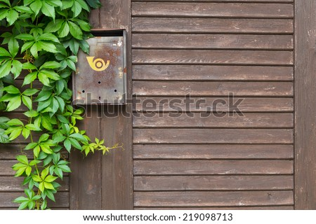old mailbox on brown wooden fence with ivy - stock photo