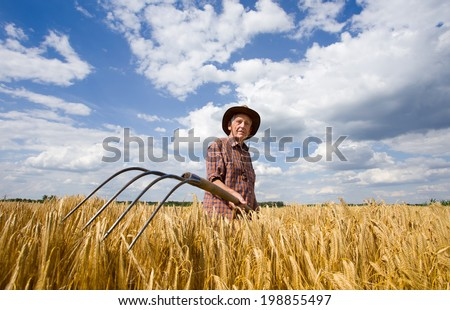Old man farmer working in barley field after hard work - stock photo