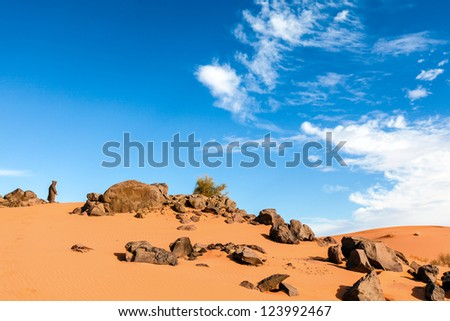 Old man wearing a traditional robe and holding a staff in the Sahara Desert overlooking the sand dunes.  Location: Erg Chebbi, Morocco - stock photo