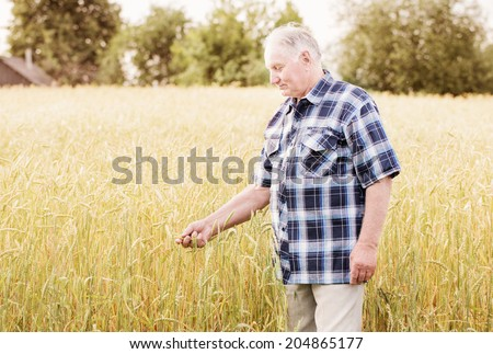 old men standing in wheat fields - stock photo