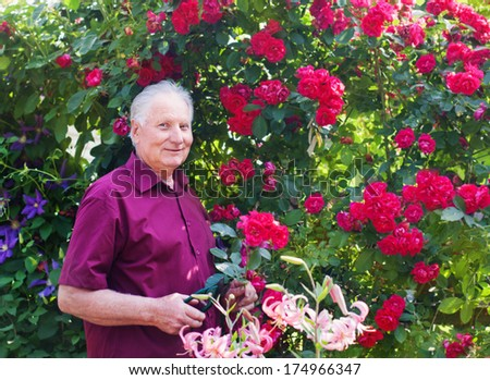 old men with flowers in garden - stock photo