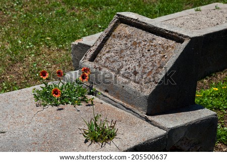 Old nameless grave stone with wild flowers  - stock photo