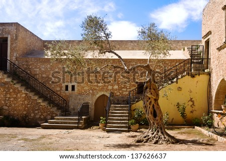 Old Olive tree on court of monastery Arkadi on Crete, Greece - stock photo