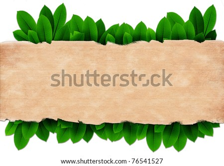 Old paper on Green leave isolate on white. - stock photo