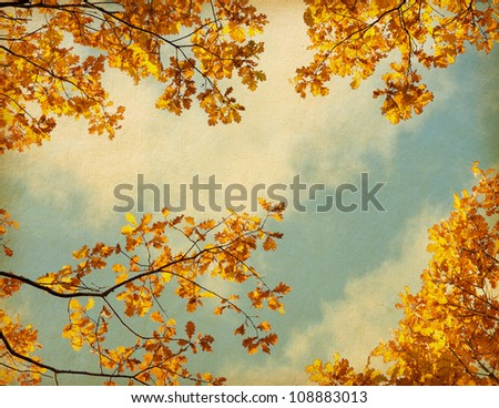 old paper. retro image of Autumn leaves on the sky background - stock photo