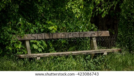 Old park bench overgrown with dense green grass under trees. - stock photo
