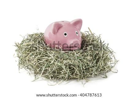 Old piggy bank in shredded paper money US dollar nest.   - stock photo