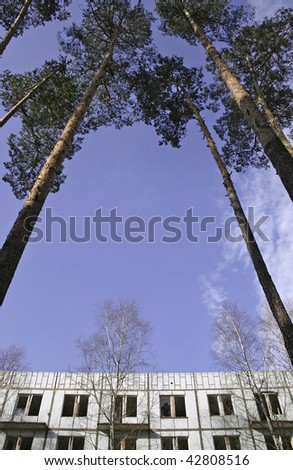 old prefab house & pine tree - stock photo
