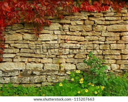 Old, ragged brick wall texture with fall greenery (for background) - stock photo