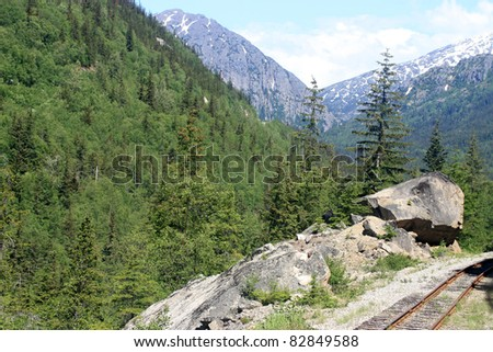 Old railroad in green forest - stock photo