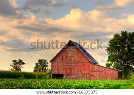 Old, red barn in corn field - stock photo