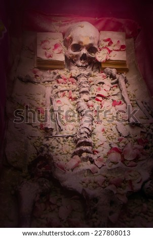 Old skeleton in the ruins  - stock photo