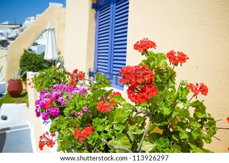 Old staircase and flowers at Santorini island,Greece - stock photo