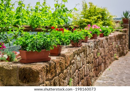 Old stone wall with flowers - stock photo