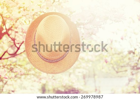 Old straw hat against attached on a plant in garden . - stock photo