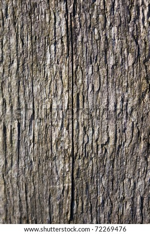 Old timber texture for background - stock photo