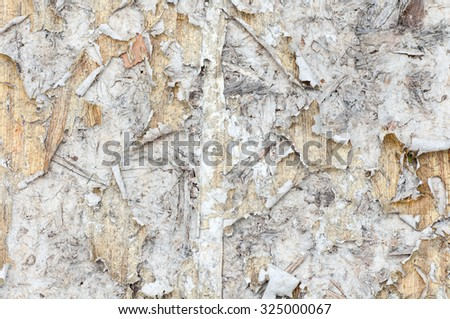 old torn paper on wood wall - stock photo