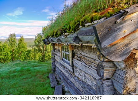 Old traditional house in Norway with grass on a roof. - stock photo
