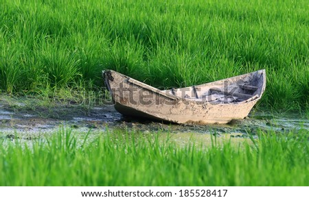 Old traditional wooden boat of Bangladesh in a paddy field - stock photo