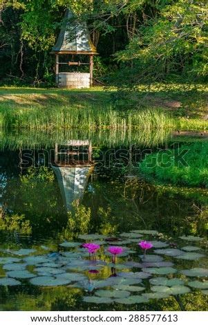 Old vintage colonial well reflecting tropical pond Tobago Caribbean - stock photo